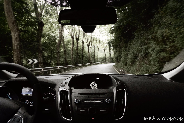 cochenomb.jpg