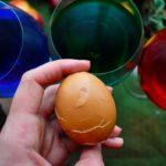 huevos de dragon GOT 0