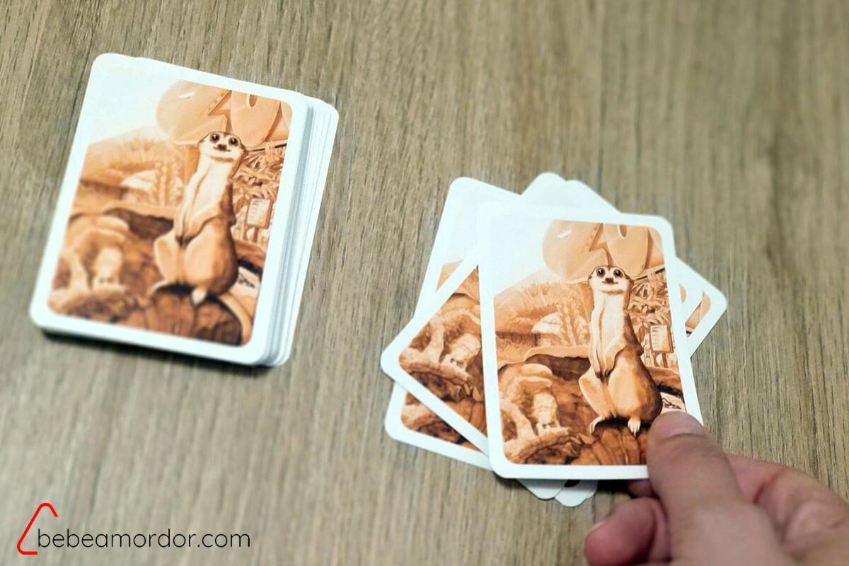 Descartar cartas suriguri gdm