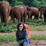Julia arrodillada delante de un grupo de elefantes