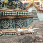 Bangkok_tradicional_Wat_Pho