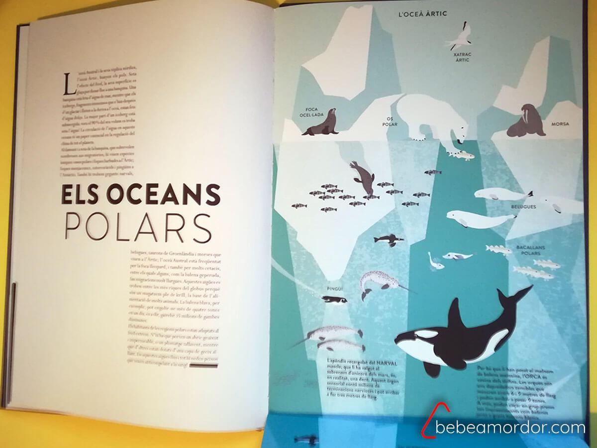 Océano vida marina polar