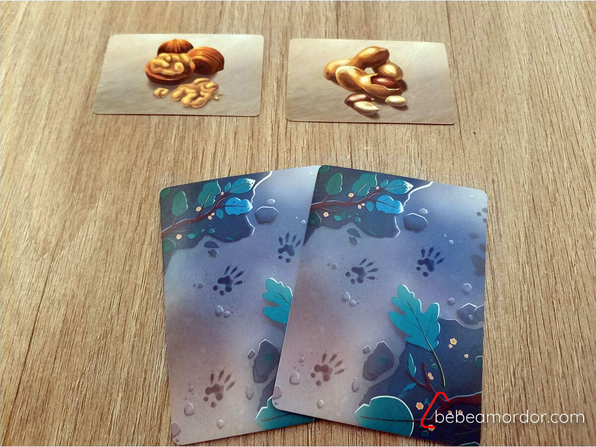 elegir cartas en el juego de mesa roedores