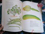 libro inventario verduras