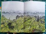 Ocultos_en_el_bosque_album_ilustrado_paginas