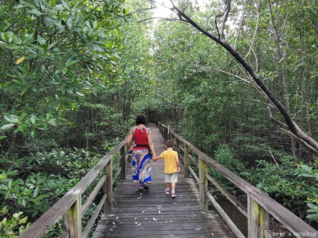 preparación viaje con niños